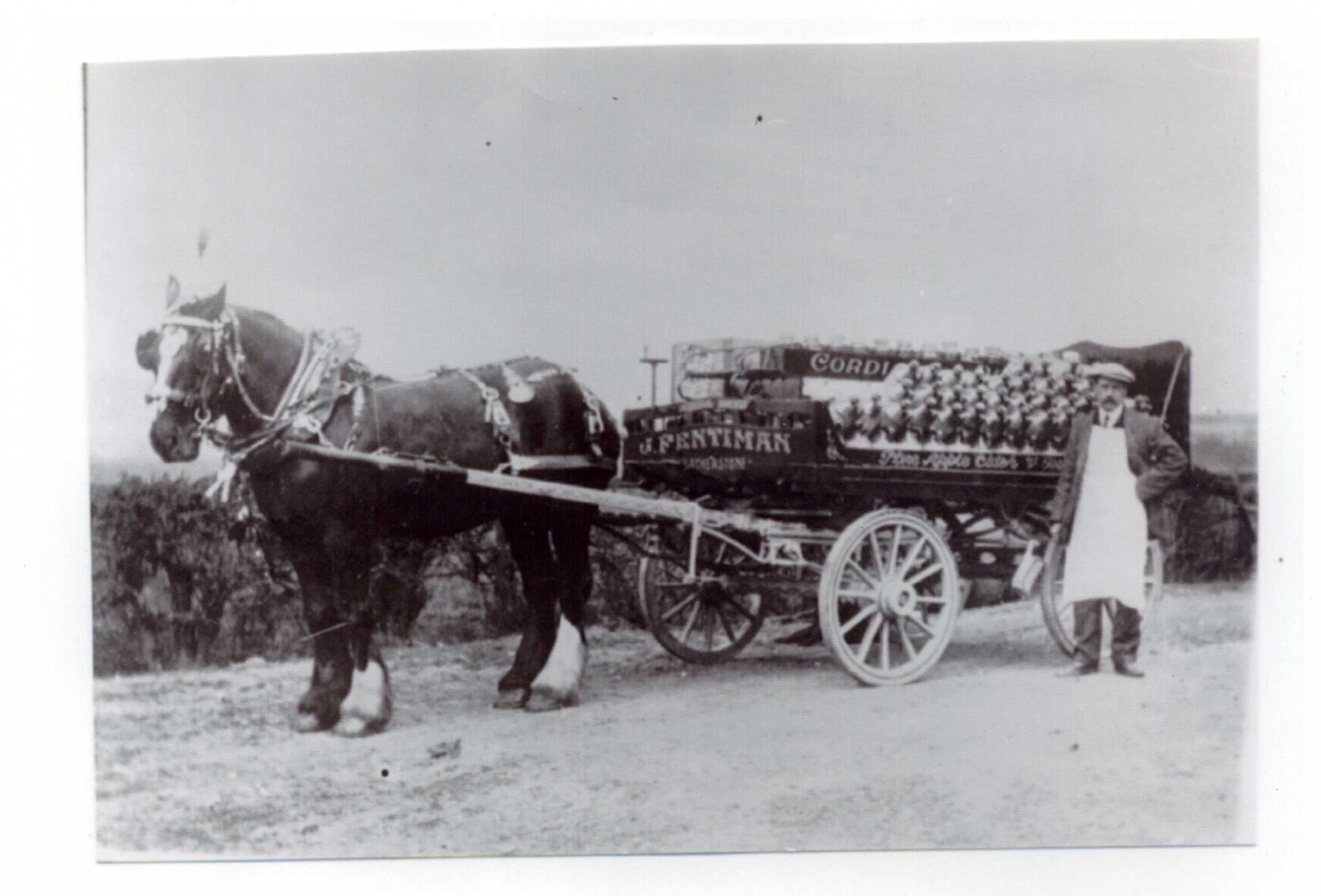 Copy of Fentimans Horse _ Cart 2