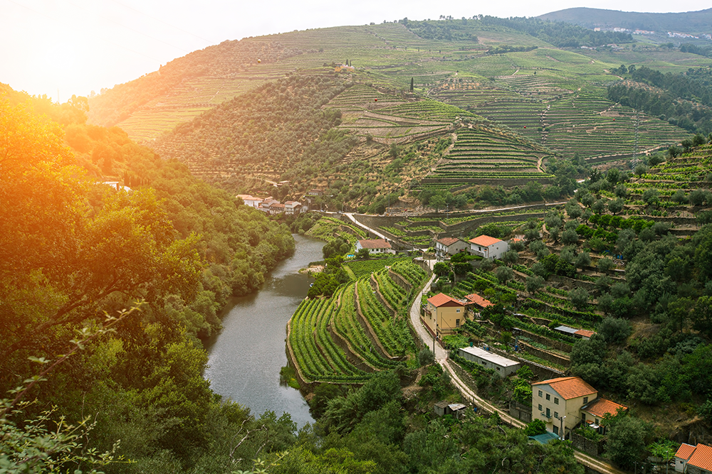 douro-valley-portugal