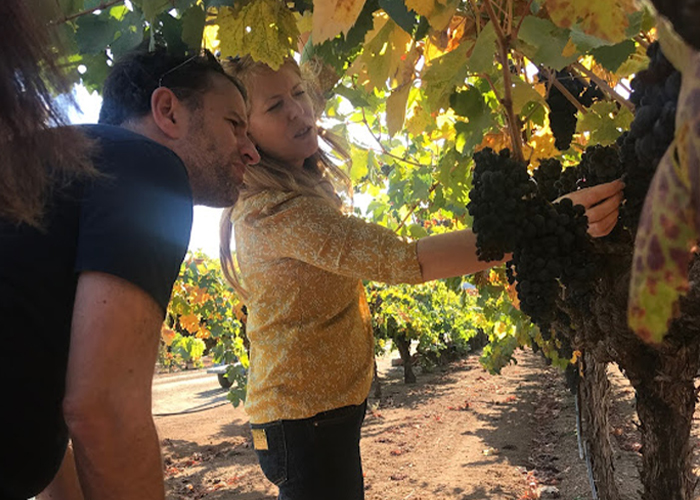 Yoav & Ondine winemaker looking at grapes.