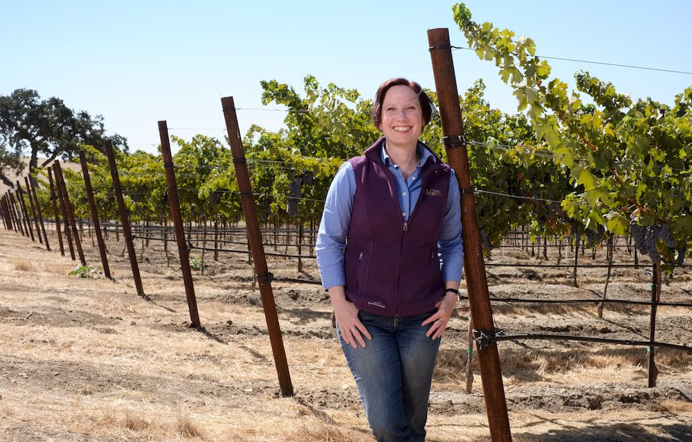 "Kristen Barnhisel Winemaker  Kristen works alongside President/ COO and longtime Director of Winemaking Jeff Meier to guide J. Lohr's white wine program. ""We are a winery that values leadership, experience and a willingness to experiment,"" says Jeff. ""From her work in multiple countries and appellations to her leadership role as a vice president at the American Society for Enology and Viticulture, Kristen has shown a remarkable commitment to research and experimentation. She's also a phenomenal winemaker.""  ""I love the challenge of making serious white wines that reflect their vineyard roots,"" says Kristen. ""It is incredibly rewarding to take an inherently transparent grape and to find that perfect place where fruit avors, aromatics, alcohol, acidity, texture and palate length all come into perfect balance."