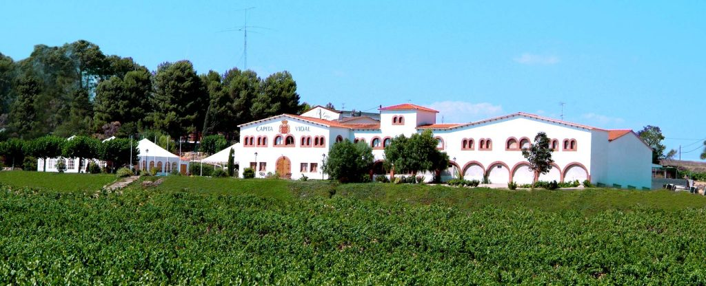 classical wines - mont marcal cantina