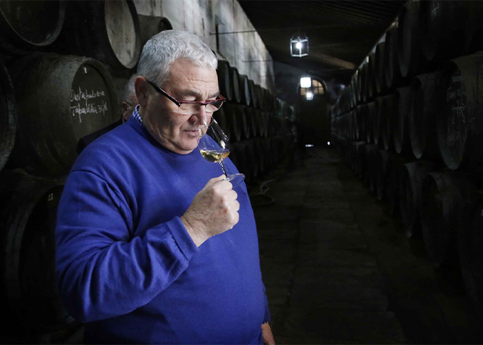 classical wines - paco yuste